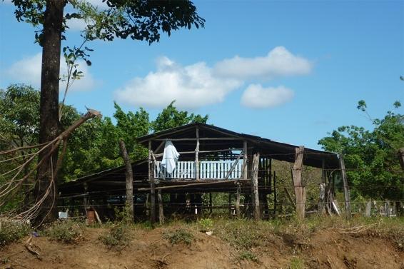 Costa Rica 2010 115