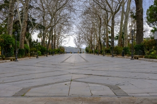 Ronda Park 1